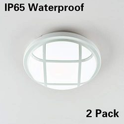 "LED Ceiling Light, LED Wall Lamp, Surface Flush Mount 20W Ceiling Lights Fixture, 8.7"" Rou ..."