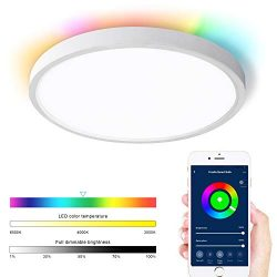 Lonon Smart Ceiling Light Fixture,20W Dimmable Brightness and 4W RGB Back Surface Mount LED Smar ...
