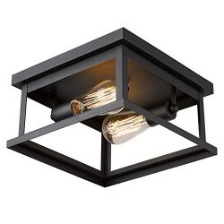 Emliviar Flush Mount Light Fixture, 2-Light 11-inch Ceiling Light in Black Finish, 1803EW1-F1 BK