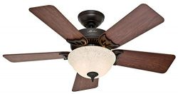 Hunter Indoor Ceiling Fan with light and pull chain control – Kensington 42 inch, Nobel Br ...