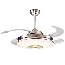 reiga 44-inch Silver Modern Ceiling Fan Retractable Blades with Dimmable LED Lights, Remote Cont ...