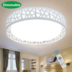 DLLT Modern Ceiling Light with Remote 35W, Dimmable Flush Mount Led Ceiling Light, Round Lightin ...