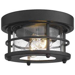 Emliviar 2-Light Round Ceiling Light Fixture, Farmhouse Flush Mount Ceiling Light 11 Inch, Black ...