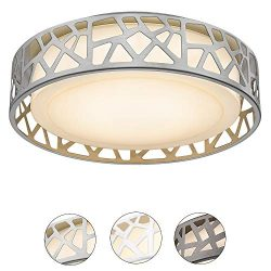 Ceiling Light Fixtures, VICNIE 14 inch 20W 1400 Lumens LED Flush Mount, Dimmable 3000K Warm Whit ...