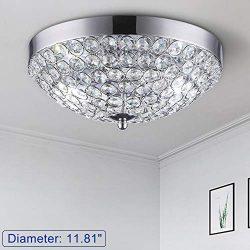 DLLT Modern Crystal Light Fixture Ceiling Flush Mount, 2-Light Small Chandelier for Bedroom, Ent ...