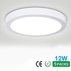 12W Flush Mounted LED Panel Wall Ceiling Down Lights,Close to Ceiling Fixture, Panel Lamp Mount  ...