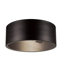 Globe Electric 44479 Teagan 1 Outdoor Indoor Flush Mount Ceiling Light, Dark Bronze, Clear Glass ...